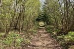 2017-04-22-Krim-Trenk-Iski_vintgar-11